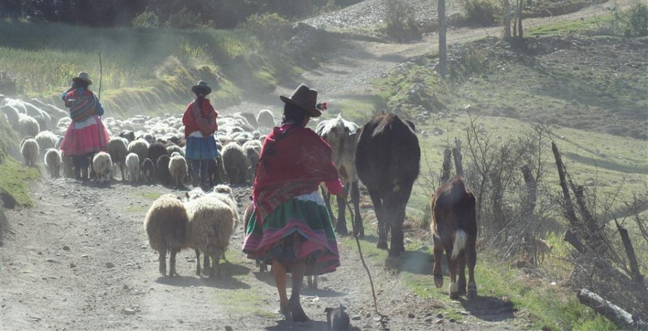 Road to Ischinca, Peru