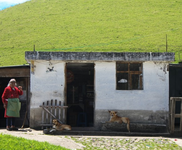 Near Antisana, Ecuador